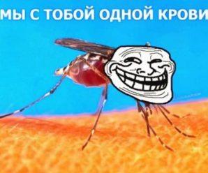 Самое лучшее средство от комаров